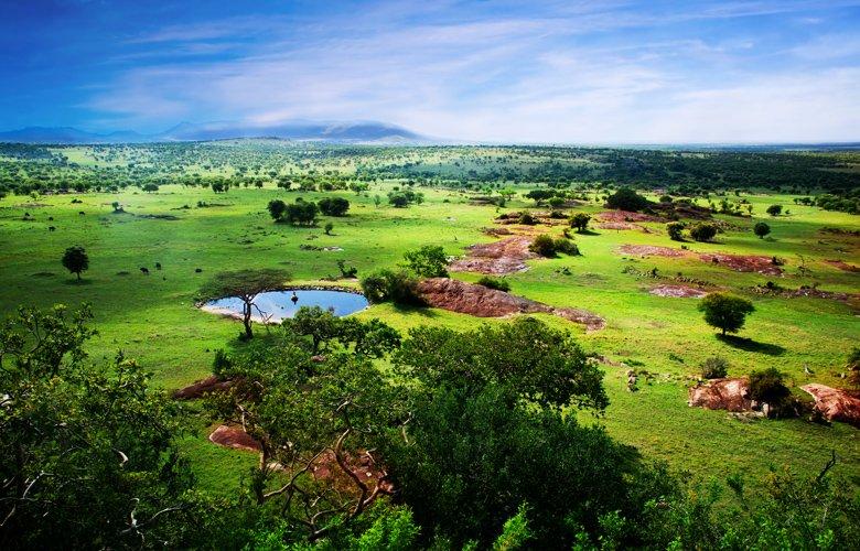 Σαφάρι στην Τανζανία, Ζανζιβάρη